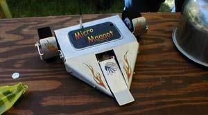 Micro Maggot